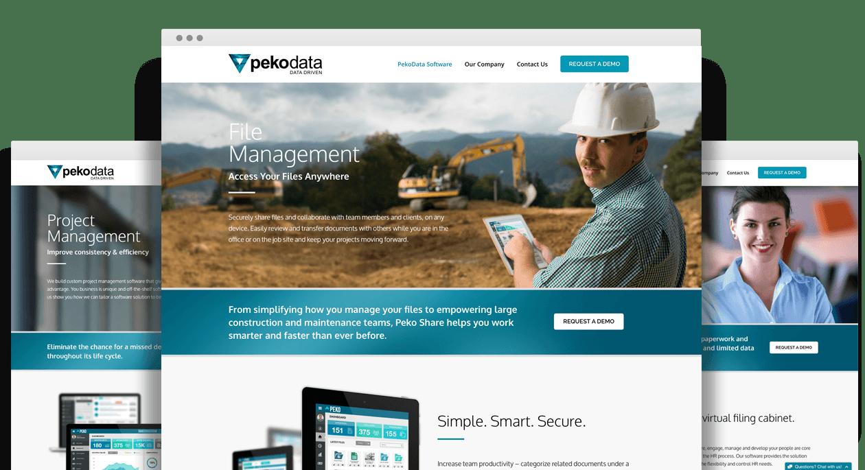 Peko Data Website Design
